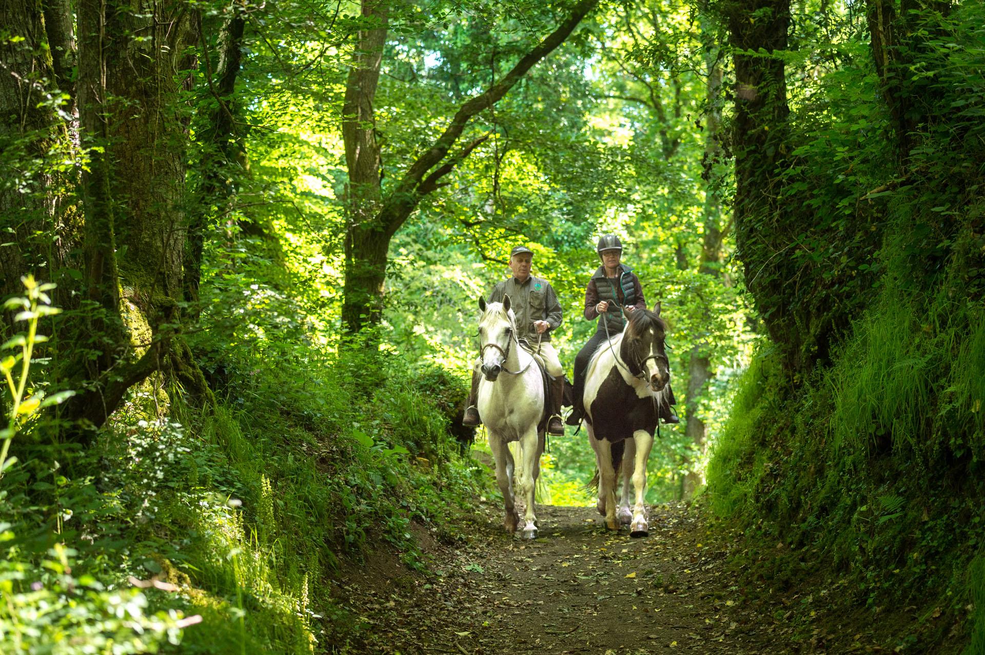 Balade à cheval dans la Vallée du Gouët