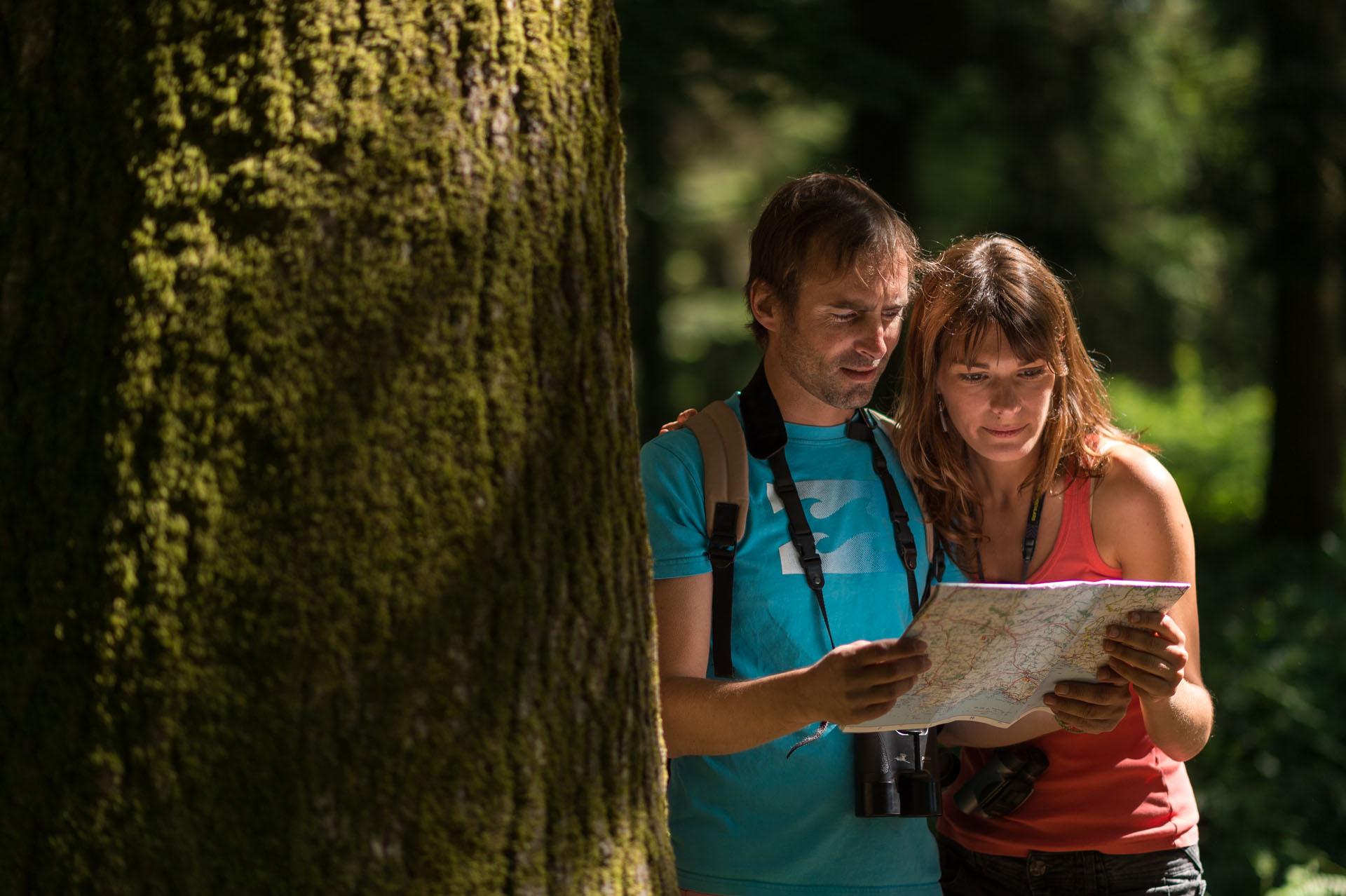 balade dans la forêt départementale d'Avaugour Bois Meur, Saint-Péver, Côtes d'Armor